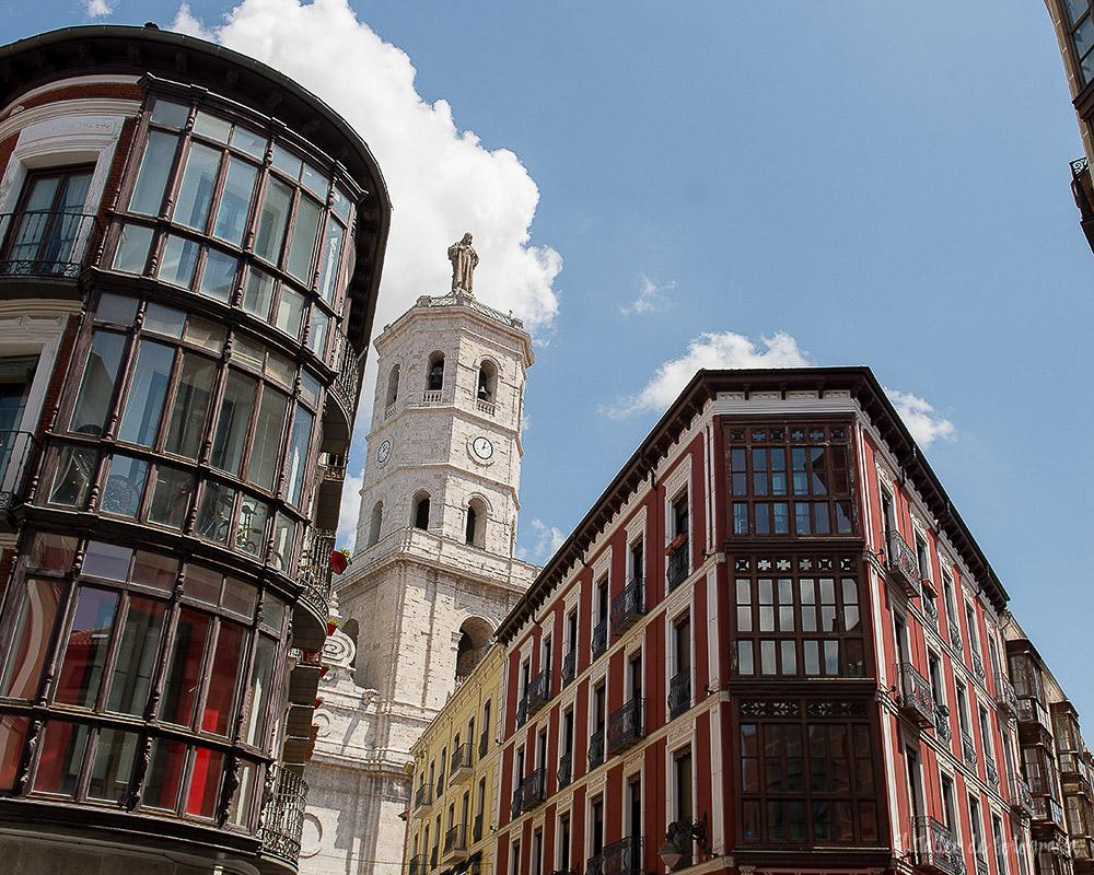 Preboda por las calles del centro de Valladolid con la catedral de fondo