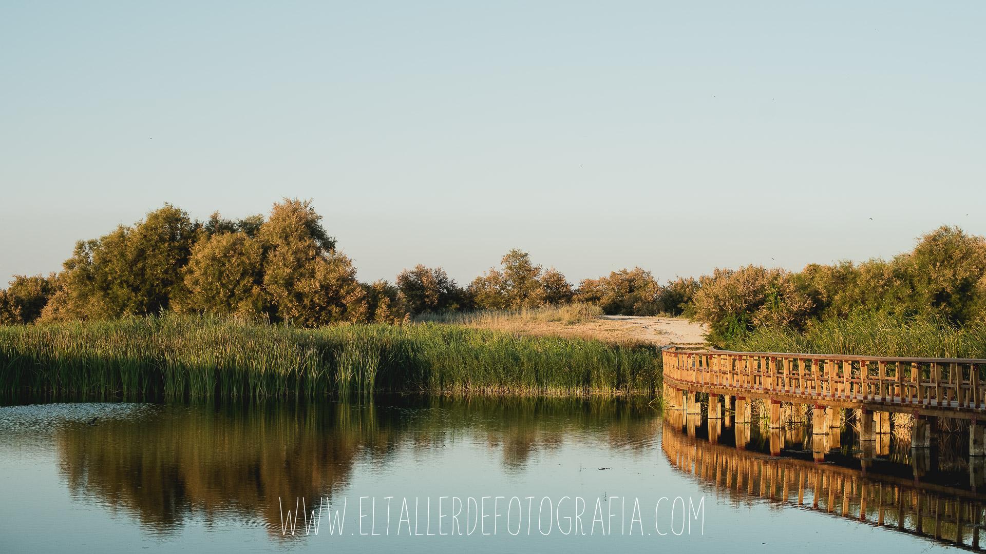Paisaje con una pasarela con Reflejos en Las Tablas de Daimiel - Parque Nacional en Ciudad Real